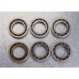 Bearing Nupj2008 Ecma/C3 or Cylindrical Roller Bearing Nup218 Nu212